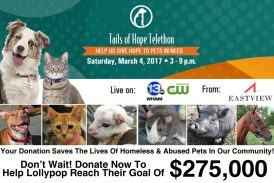 Tails of Hope Telethon 2017
