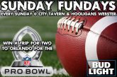 Bud Light Sunday Funday | WIN A PRO BOWL TRIP
