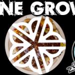 Zone Grown